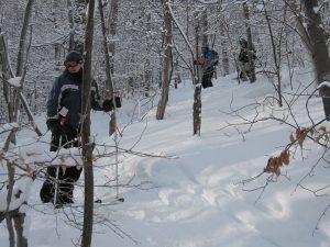 Ski Plattekill