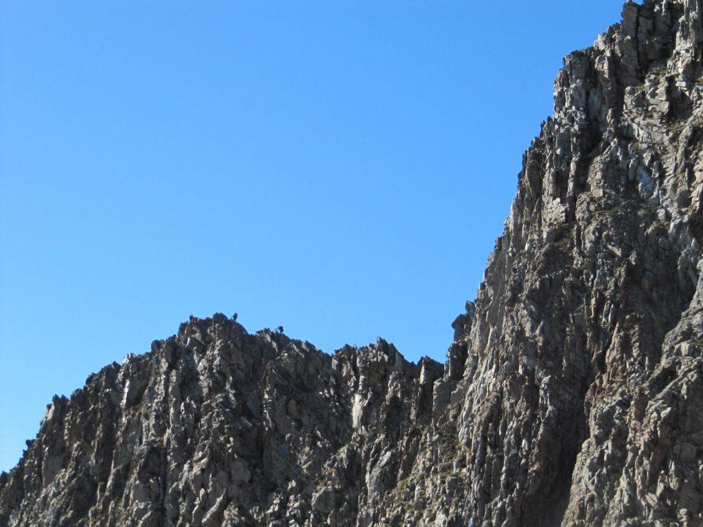 Cresta Canigó