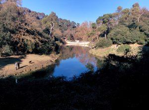 Pantano de Vallvidrera