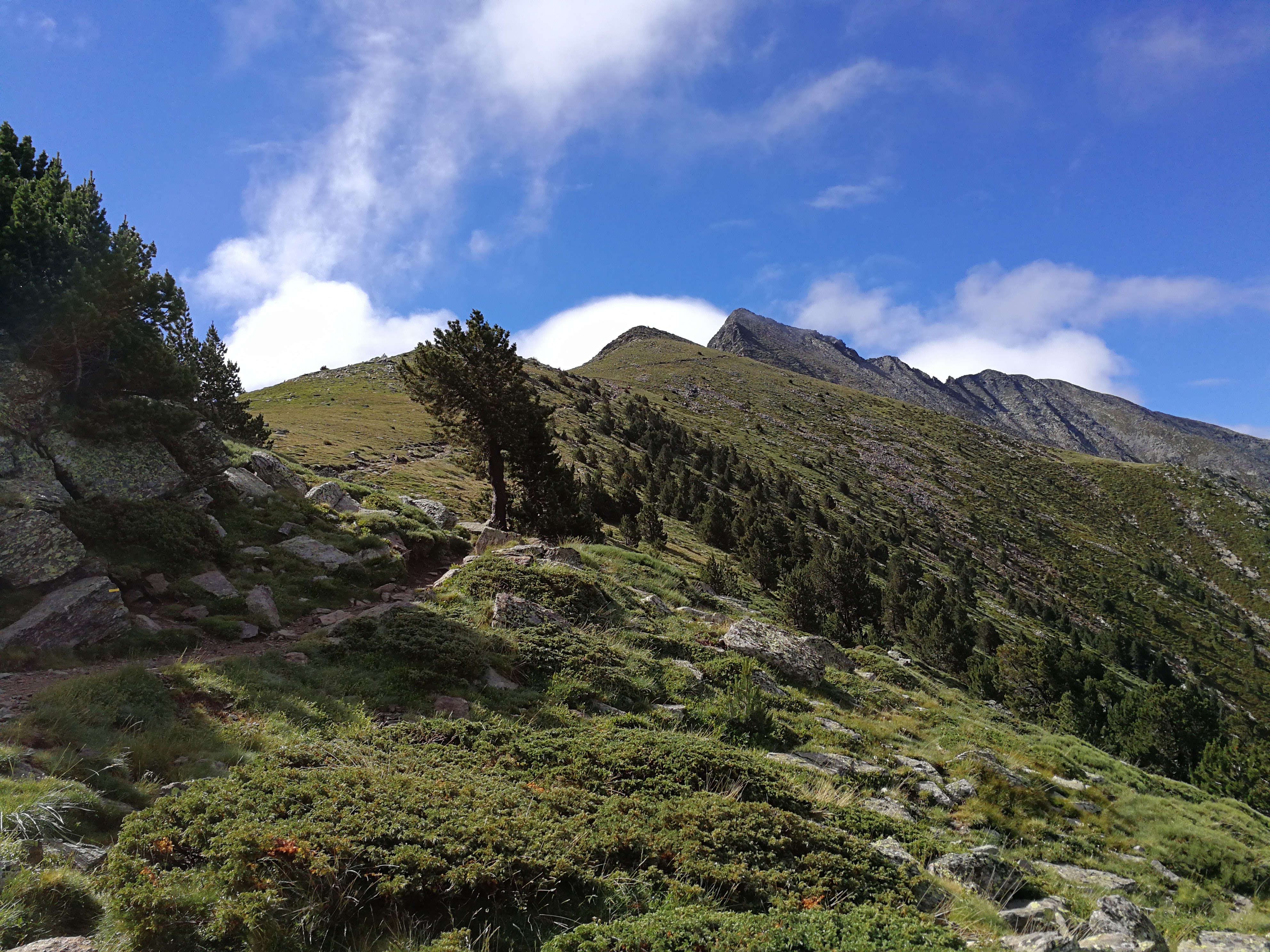 Vista a la cima del Canigó