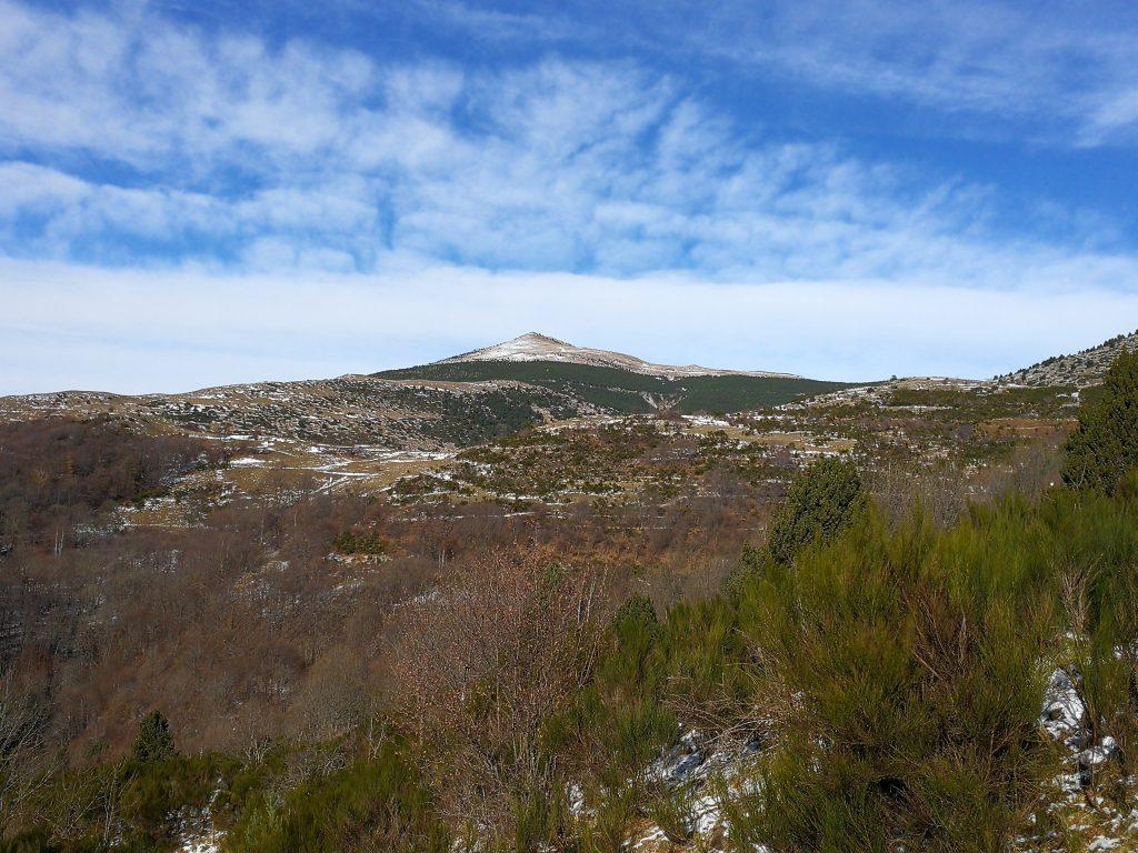 Puig Cerveris